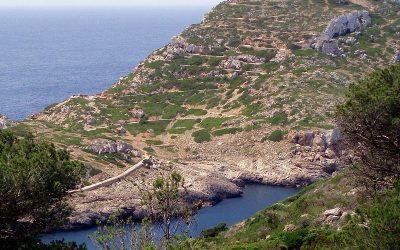 Vacaciones single a Isla de Cabrera 2020